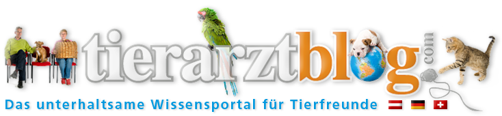 www.tierarztblog.com