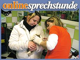 Online Tierarzt @FACEBOOK