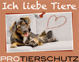 Ich liebe Tiere | PRO TIERSCHUTZ