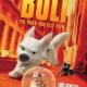 Bolt – ein Hund für alle Fälle