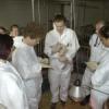 science camp: Traumberuf Tierarzt auf dem Prüfstand