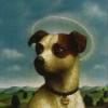Saint Guinefort - Ein Hund als Heiliger und Märtyrer