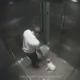 Kleinen Hund brutal getreten: New Yorker Tierquäler von Überwachungskamera überführt und in Rekordzeit verhaftet