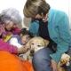 Tierische Therapeuten - positive Auswirkungen auf kranke Seelen und kranke Körper