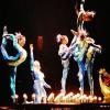 Menschen, Tiere, Komplikationen - Wildtiere leiden im Zirkus