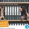 Wirtschaftskrise treibt überfüllte Tierheime in die Insolvenz
