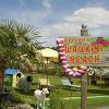 Waukiki Beach: Traumurlaub für 4 Pfoten
