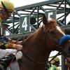 Das Kentucky Derby - Auftakt zu den Triple Crown