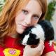 Musik für Meerschweinchen: Leise Töne bevorzugt