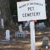 Ein Tierfriedhof für Luxemburg!