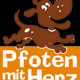 Pfoten mit Herz: Ausgebildete Therapiehunde helfen Kindern
