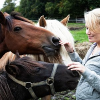 Österreichischer Tierschutzpreis 2010: Gesucht wird der beste Freund der Tiere