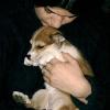Ylvie & Ich