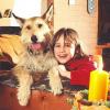 Weihnachtsgeschenke für Haustiere sind im Trend