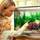 Von wegen tierisch taub: Fische können gut hören