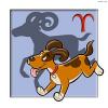 Welcher Hund passt zu mir? – Sternzeichen Widder