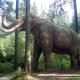 Jurassic Park naht: Forscher wollen Mammut klonen