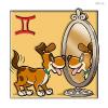 Welcher Hund passt zu mir - Sternzeichen Zwilling