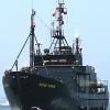 Japanische Walfänger von Walschützern zum Rückzug gezwungen