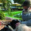 Mehr als eine Tierklinik: Kur & Wellness für 4 Pfoten im Tierhotel an der Therme Loipersdorf