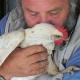 Die hinkende Laura: Physiotherapie für eine Henne