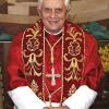 In der katholischen Kirche haben Tiere keinen Platz ?