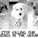 Keine Ende des Hundemassakers: UEFA läßt Kritik kalt - Ukraine Hilfsaktion mit ETN