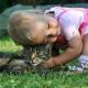Was bei der Anschaffung eines Haustieres zu beachten ist