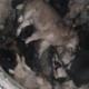 Kein Ende der Grausamkeiten in der Ukraine: Massengrab mit Hunden endeckt