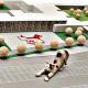 TierQuarTier: Ein neues Tierheim für Wien
