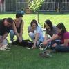 Gewaltfreiheit und Qualitätssicherung in der Hundeausbildung