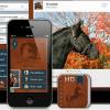 Pferdeführer App von Nature Mobile: Das ideale Nachschlagewerk mit integriertem Bilderquiz