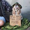 Verantwortungsbewußte Unternehmen engagieren sich für den Tierschutz