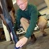 Uni-Tierärzte entwickelten Hightech-Bandage für Pferde