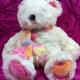 Bärenkauf unterstützt Tierschutz und tröstet kranke Kinder