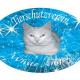 Weiße Engel für Katzen: Kastrationsaktion des TSV white angel