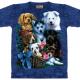 T-Shirts for Tierschutz - Unterstützte Projekte der Woche