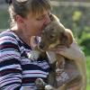 Animal Welfare Bulgaria - Fellnasen und Samtpfoten: Wir helfen