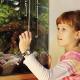Lebendiger Unterricht: Biologie dank Schulaquarium besser verstehen