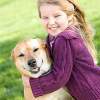 Vorsorge für Heimtiere: OP Versicherung für Hunde