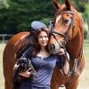 Tierisch gut geschützt: Für Pferd und Hund benötigen Tierhalter eine spezielle Haftpflichtversicherung