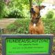 Mobbing in der Hundeauslaufzone: Wie verhalte ich mich richtig?