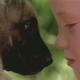 """Almo Nature präsentiert den Kurzfilm """"The Promise"""": Am Anfang stand der Wolf"""