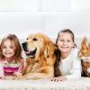 Tierischer Nachwuchs: So fühlt sich das neue Familienmitglied wohl!