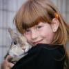 Gesundheitscheck beim Kaninchenkauf