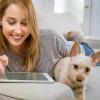 Wie die digitale Welt Ihr Leben und das Ihres Hundes verbessern kann