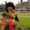 Getestet: Dresden mit Hund erkunden