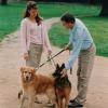 Locker an der Leine: entspannt spazieren mit dem Hund