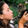 Overgrooming: Wenn die Fellpflege der Katze zum Zwang wird