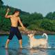 Der nächste Urlaub kommt bestimmt: Ferien mit Hund